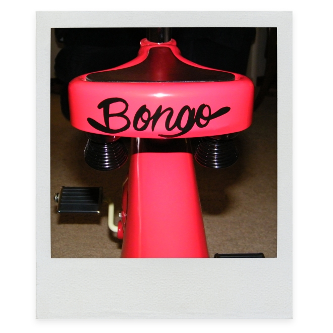 Bongo-The-Bear-Decal